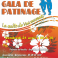 Affiche gala avril2017